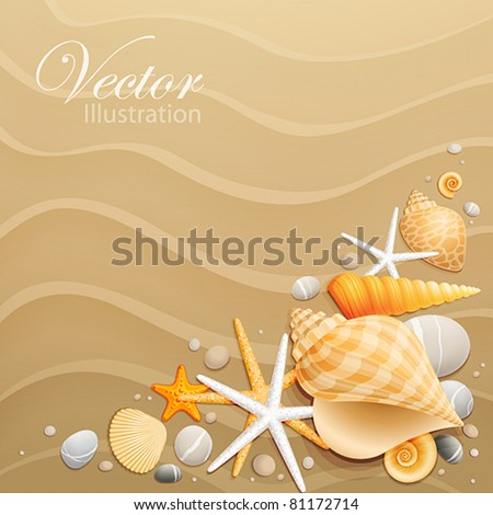 Shells and starfishes on sand background. Vector illustration. - stock vector