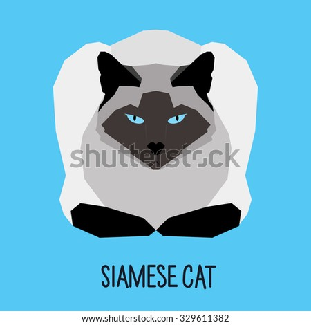 Siamese cat. Abstract Cat. Cartoon cat. Cat isolated on blue. Nature and wild theme. Graphic cat. Cat gaze. Cat close up. Cat for card, book, sketch book, invitation, note book, album, banner. Cat - stock vector