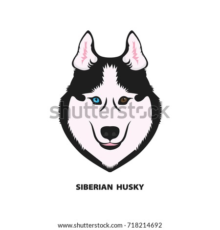 siberian husky dog color head vector illustration