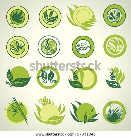 Signs with green leafs which show idea of ecology, naturality and freshness. Can be used for package design - stock vector