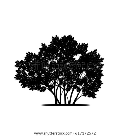Bushes Stock Images Royalty Free Images Amp Vectors