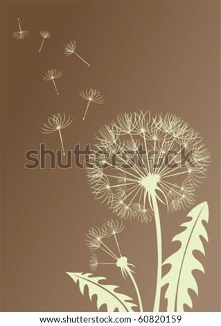 Silhouette dandelion - stock vector