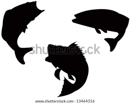 Silhouette of a bass - stock vector