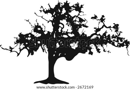 Silhouette of a black oak tree on white - stock vector