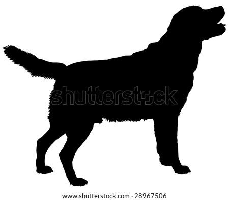 silhouette of a dog of breed labrador retriever