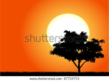 Silhouette of a tree in the sunset of Africa - stock vector