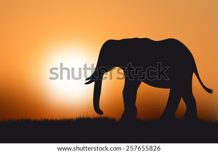 Silhouette of elephant at sunset - vector illustration - stock vector