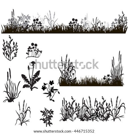 silhouette of grass and plants, in isolation,vector, isolated