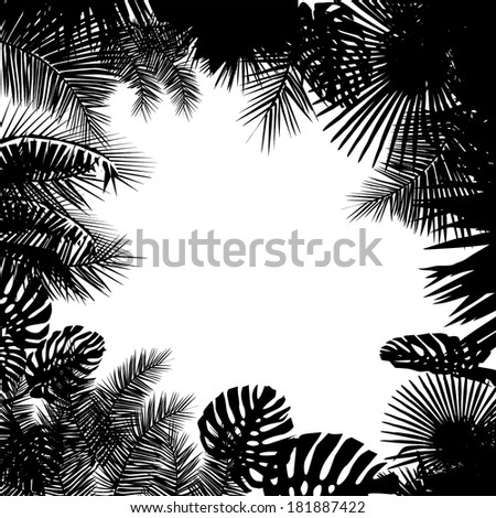 silhouette of palm leaf frame. vector - stock vector