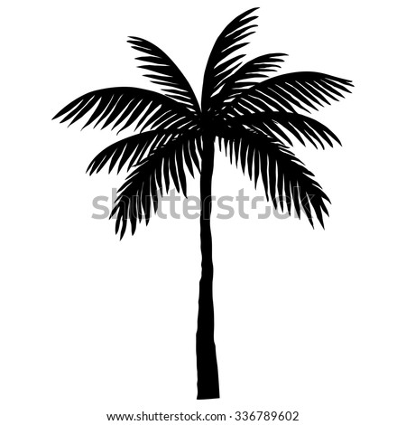 silhouette of palm trees - stock vector