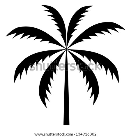 silhouette of palm trees. Vector illustration. - stock vector