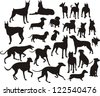 silhouette of the dogs - stock vector