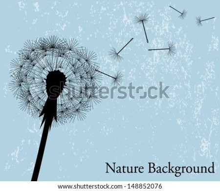 silhouette of the expanding dandelion on a light blue background - stock vector