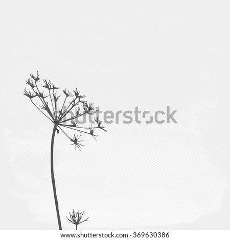 Silhouette of the flower