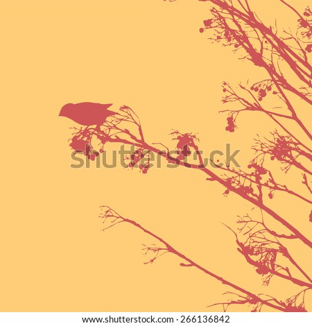 silhouette of the small bird on a branch of a mountain ash. vector illustration. - stock vector