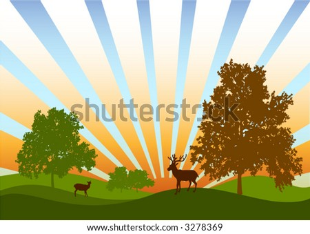 Silhouette of two deers - stock vector