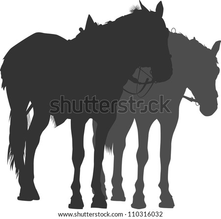Silhouette of two horses - stock vector