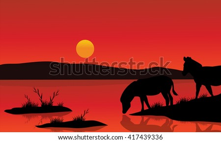 Silhouette of zebra in riverbank with red backgrounds