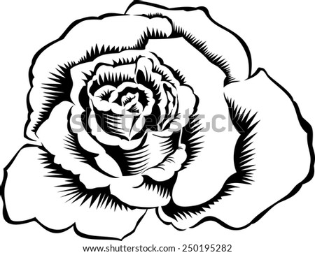 Silhouette outline rose, isolated on white. Vector tattoo illustration
