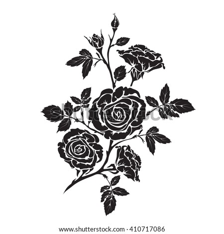 Silhouette rose branch with opened flowers and buds, hand drawn vector - stock vector