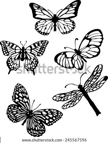 Silhouette set of isolate vector butterflies - vector illustrator - stock vector