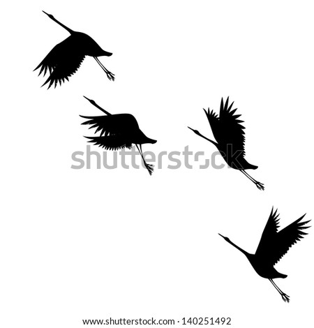 silhouettes birds on white background.Vector - stock vector