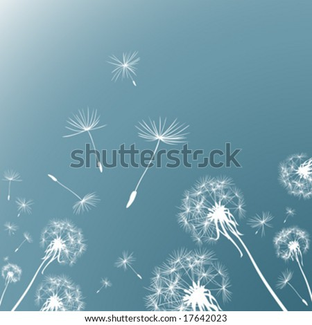 silhouettes dandelions in the wind - stock vector