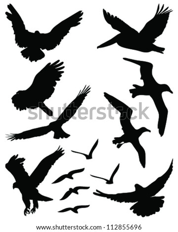 Silhouettes of birds in flight 2-vector - stock vector