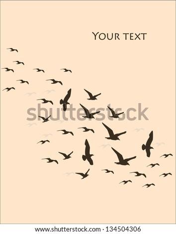 silhouettes of flying birds, vector illustration - stock vector