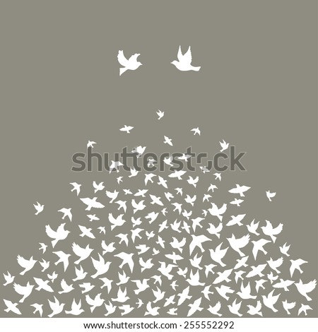 Silhouettes of flying birds, vector illustration. - stock vector