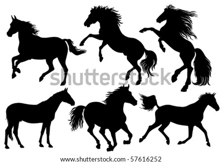 silhouettes of horses - stock vector