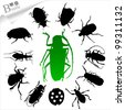 Silhouettes of insects - beetle - stock vector