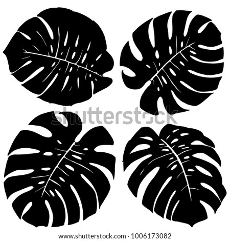 Silhouettes of monstera leaves on white background. Set of element. Vector illustation.