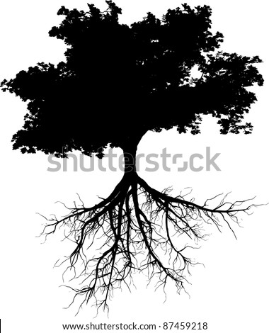 Silhouettes of tree with its roots - stock vector
