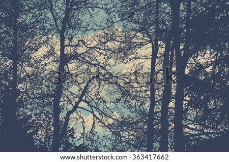 silhouettes of trees. detailed vector illustration - stock vector