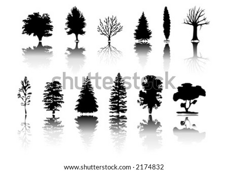 Silhouettes with different kind of trees