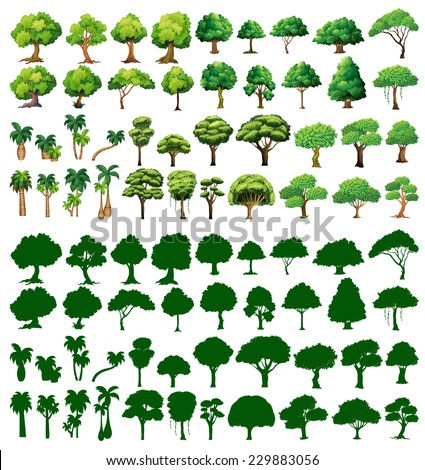 Silhoutte of trees on a white background  - stock vector