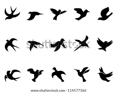 Aninimal Book: Sparrow Flying Stock Photos, Images, & Pictures | Shutterstock