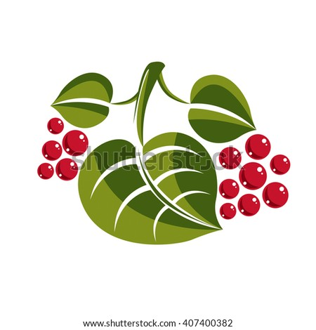Simple green deciduous vector tree leaf with red seeds, stylized nature element. Ecology symbol, can be used in graphic design. - stock vector