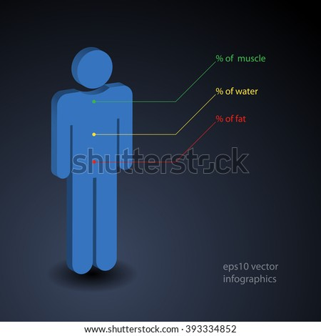 Simple infographics about percentage of muscle, water and fat in human body