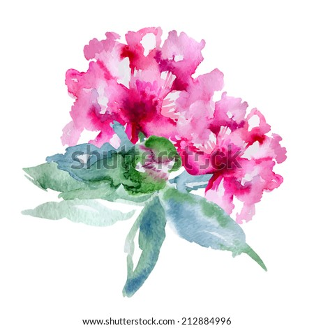 Single pink peony isolated on white background. Vector illustration - stock vector