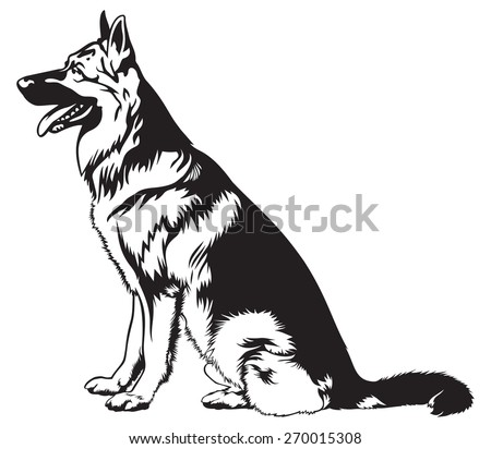 253998 Simple Corner Ornaments Vector additionally Sitting Dog German Shepherd Breed Vector 270015308 furthermore Outter space in addition E3 82 B5 E3 83 A1  E3 83 99 E3 82 AF E3 83 88 E3 83 AB  E3 82 A4 E3 83 A9 E3 82 B9 E3 83 88 10086827 further Shopping Cart Clipart. on cute car art