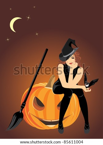 Sitting witch on the halloween pumpkin. Vector - stock vector