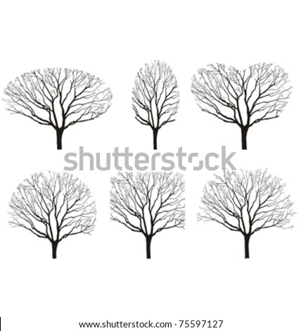 six silhouettes of tree