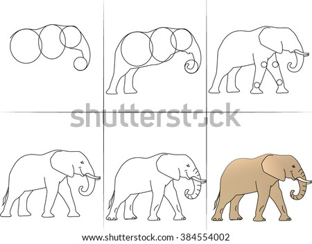 six steps of drawing animal elephant from line to final color execution