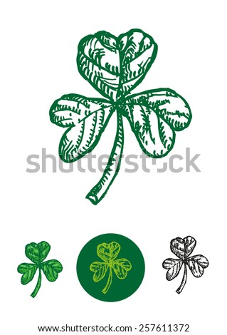 Sketch doodle artwork of the Shamrock. A Young clover leaf used as a symbol for the Christian Trinity in St. Patrick's Day holiday celebration and parade. Isolated Vector Eps10.  - stock vector