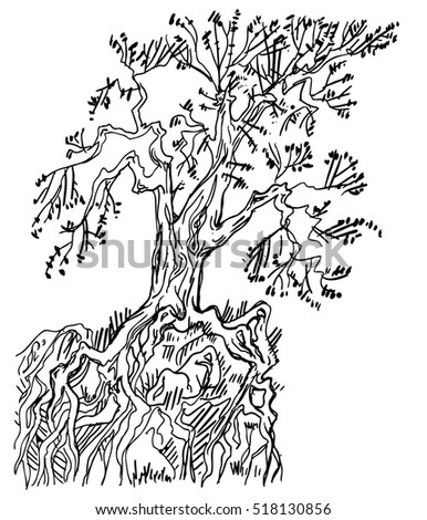 Sketch ink bare tree with roots isolated on a white background. Vector illustration.