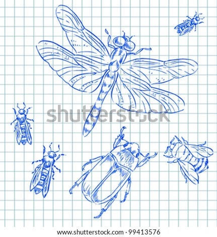 sketch insects - stock vector