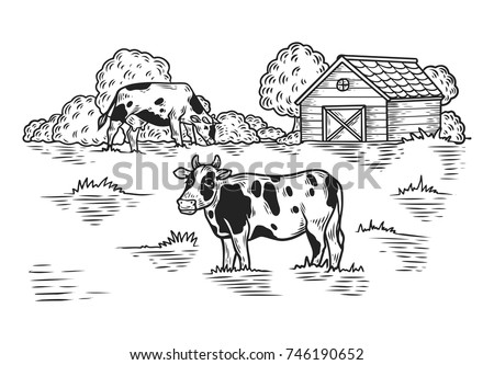 Sketch Meadow With Cow And Barn Tree Countryside Animal Outdoor View On