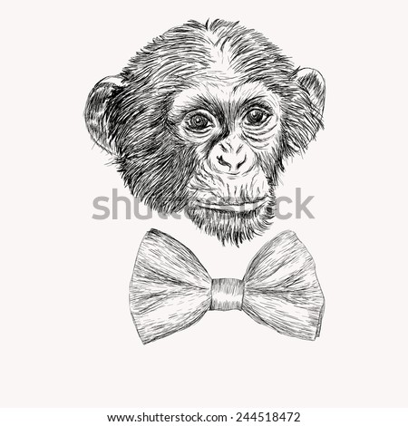 Sketch monkey face with bow tie. Hand drawn doodle vector illustration - stock vector